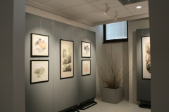 Saving Ecology through art - Zhu Renmin exhibition